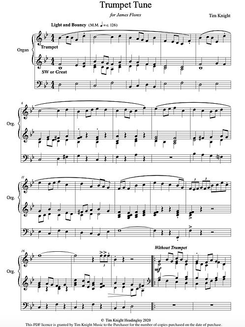 Short Organ Pieces (Set 1) (PDF Download)