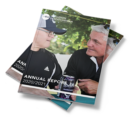 soft-cover-mock-49 (Annual Report 202020