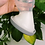 Thumbnail: Bomba Coletora de Leite Materno 100% Silicone Base Sucção e Tampa Haakaa 150 ml