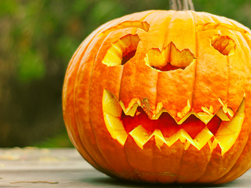 Celebrate Halloween with the Fishes at The Texas Freshwater Fisheries Center Oct. 24