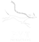 PYT logo.png