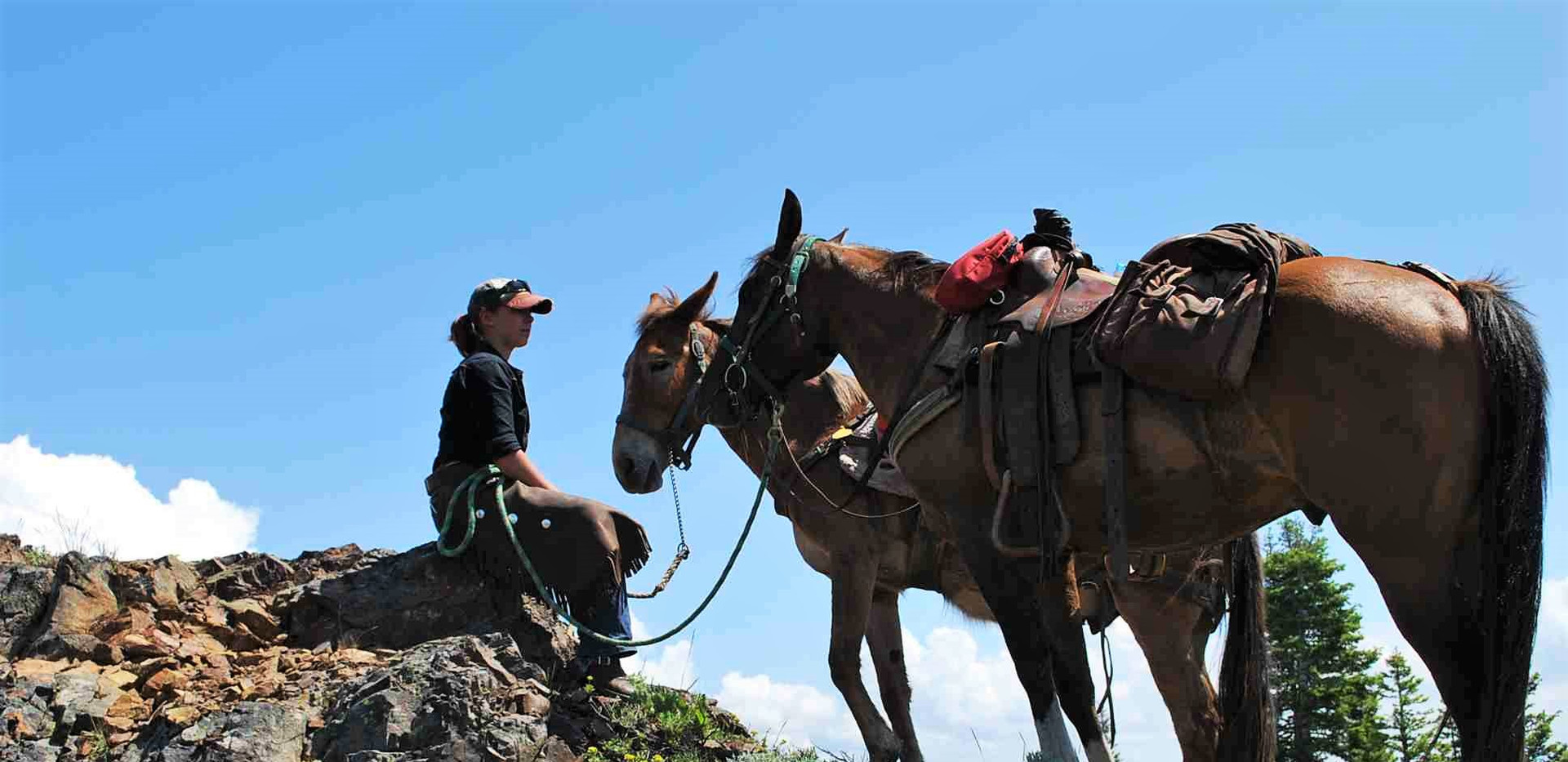 Wrangler on rock with mule & horse.jpg
