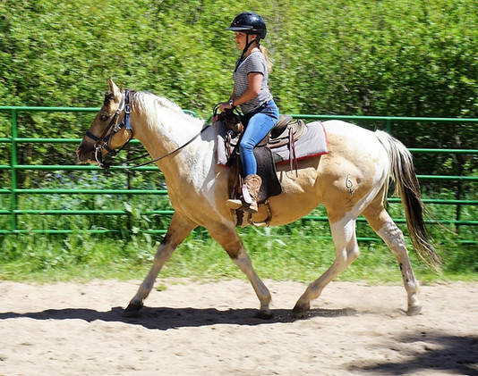 Horseback riding at Shwayder Camp.jpg