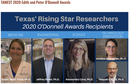 Dr. Frost receives O'Donnell Award from TAMEST