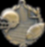 FOOTBALL_MEDAL_prd_7049_l_33140-G.png