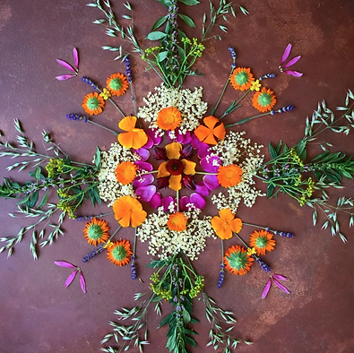 medicine flower mandala.png
