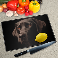 385x385-images_DOG_board.png