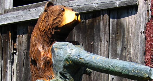 bear1.jpg