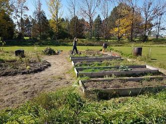 TG Grow garden.jpg