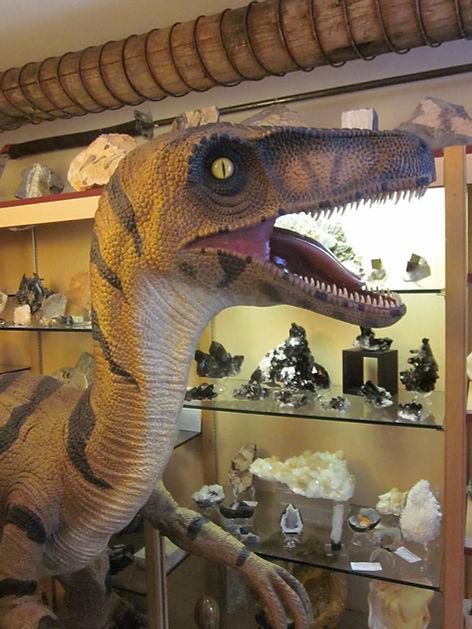 Dino the mascott at Great Canadian Prospecting!