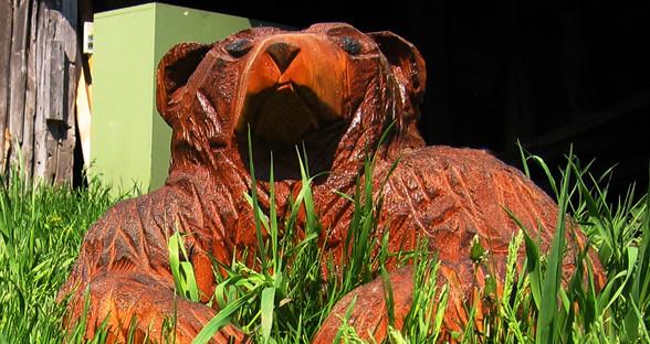 bear9.jpg
