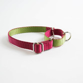 Dual-Color Martingale Training Dog Collar Manufacturer - Red side.jpg