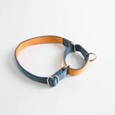 Dual-Color Martingale Training Dog Collar Manufacturer - Blue side.jpg