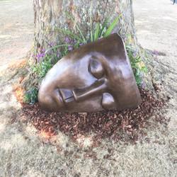 Large Sleeping Face