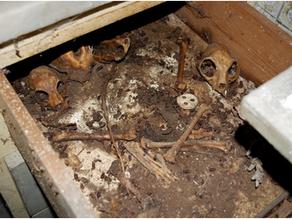 Νεκροταφείο ζώων η κουζίνα στο υπόγειο του σπιτιού της Gina Bachauer