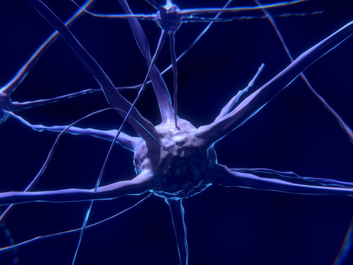 Serendipity in Science: A Cure for Parkinson's
