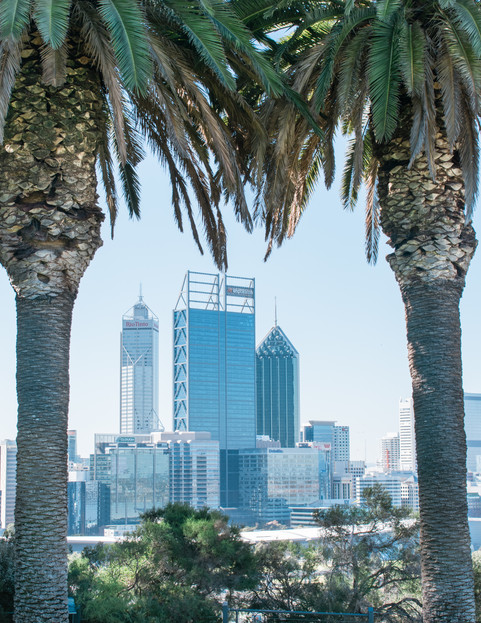 View of Perth from Kings Park