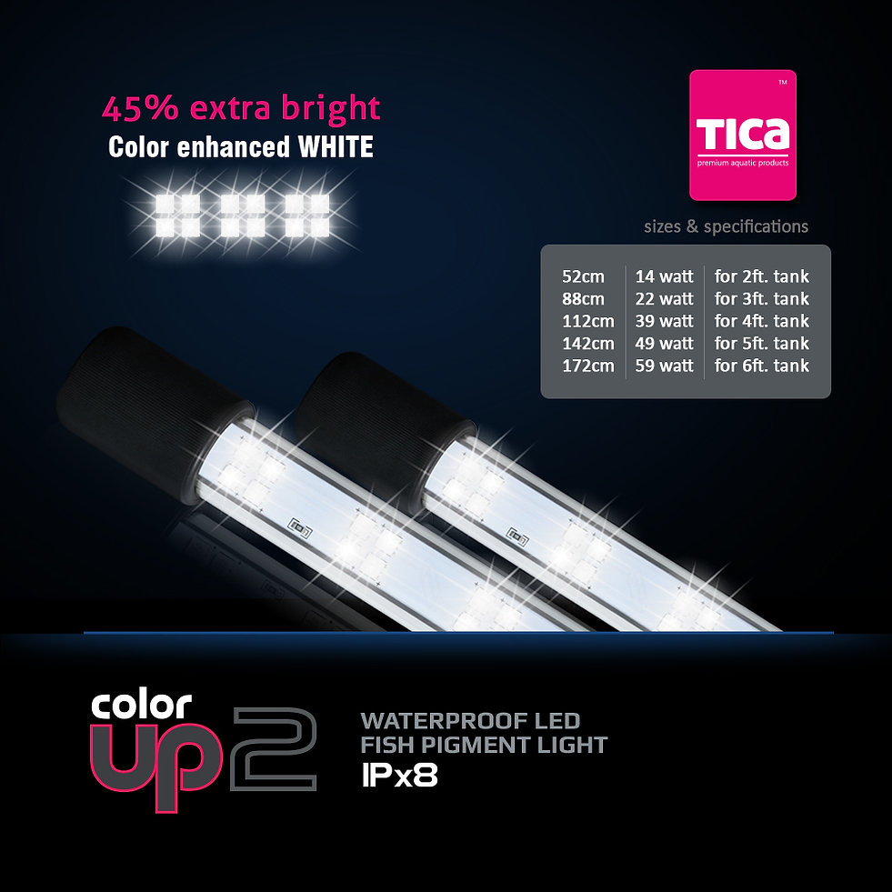 Color-Up-2-all-sizes-+-watt_1000x1000.jp