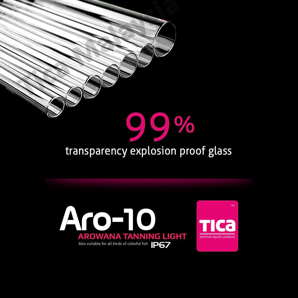 Aro-10_2_watermark_1000x1000.jpg