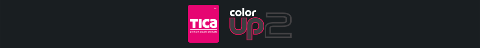 color up 2