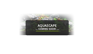 Aquascape-coming-soon_main-page.png
