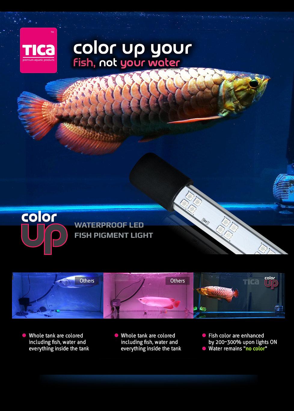 ColorUP_3-comparison_1000x1400.jpg