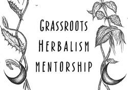 Grassroots Herbalism Mentorship