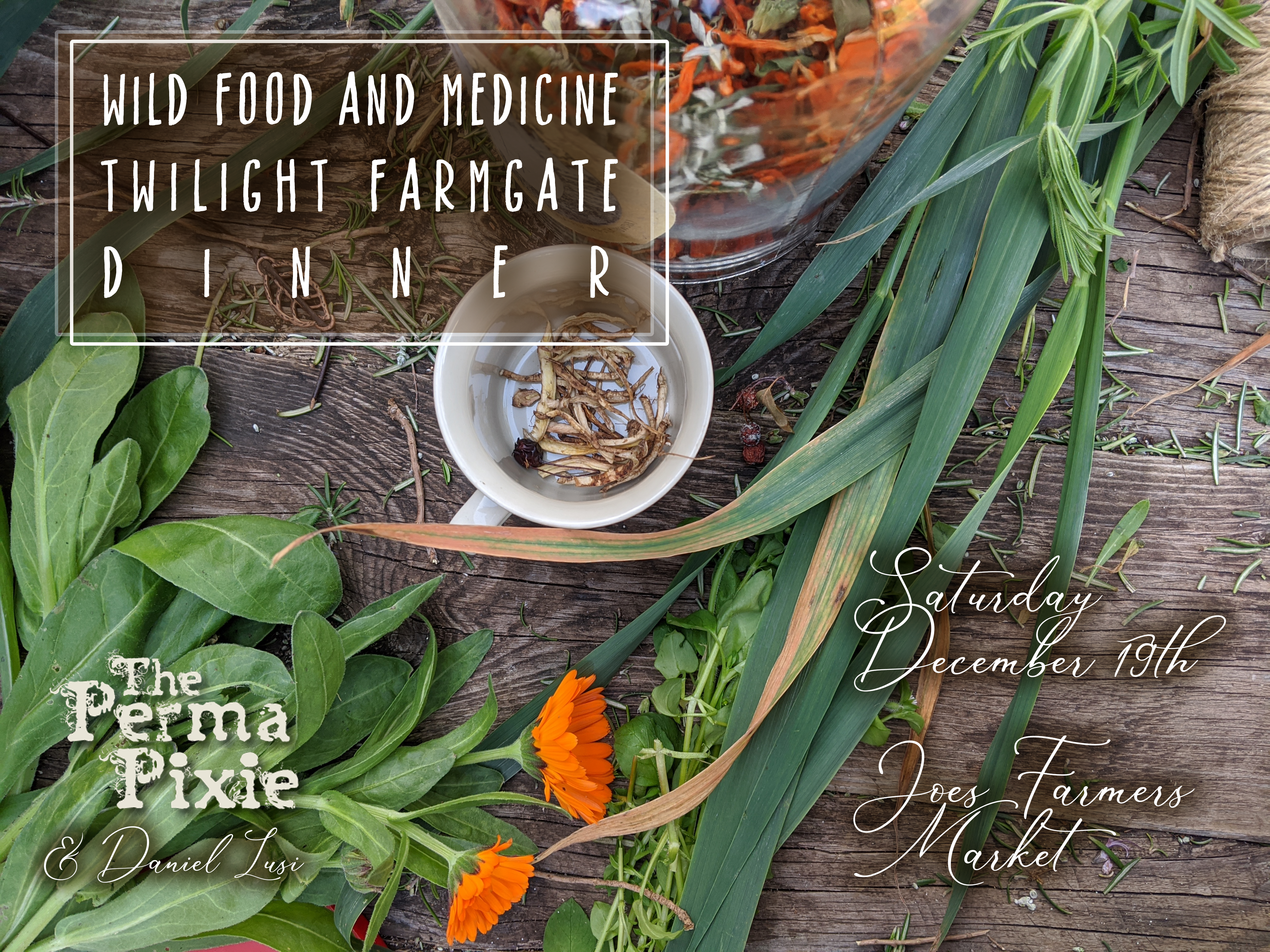 Wild Food and Medicine Dinner