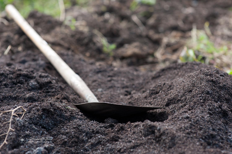 Building Soil