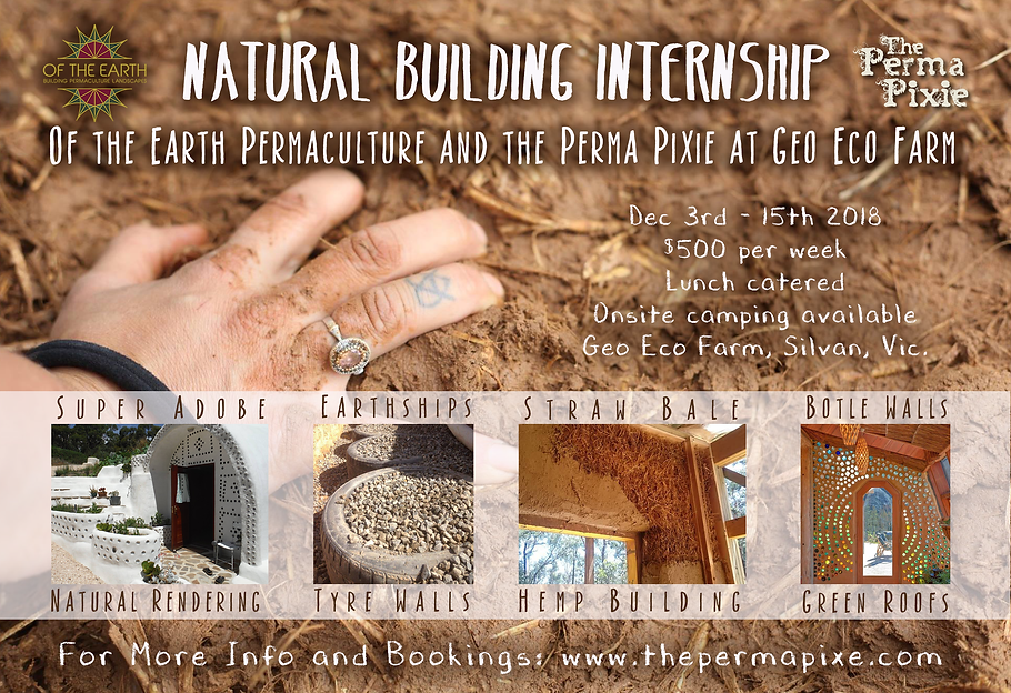 Natural Building Internship_Flyer2018.pn