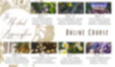 AE_HAP_Online_Content_Flyer.png