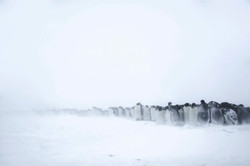 Mirage Antarctique