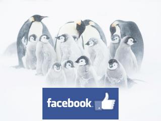 Le Temps d'un Blizzard sur Facebook