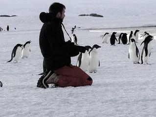 Nouvel article sur l'Antarctique