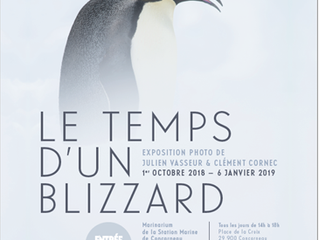 Le Temps d'un Blizzard de retour au Marinarium
