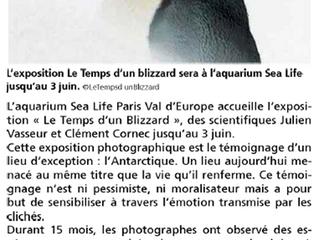 Hebdomadaire, La Marne: l'Antarctique entre beauté et danger