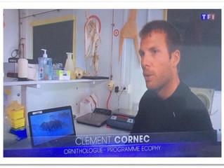 L'Antarctique sur TF1
