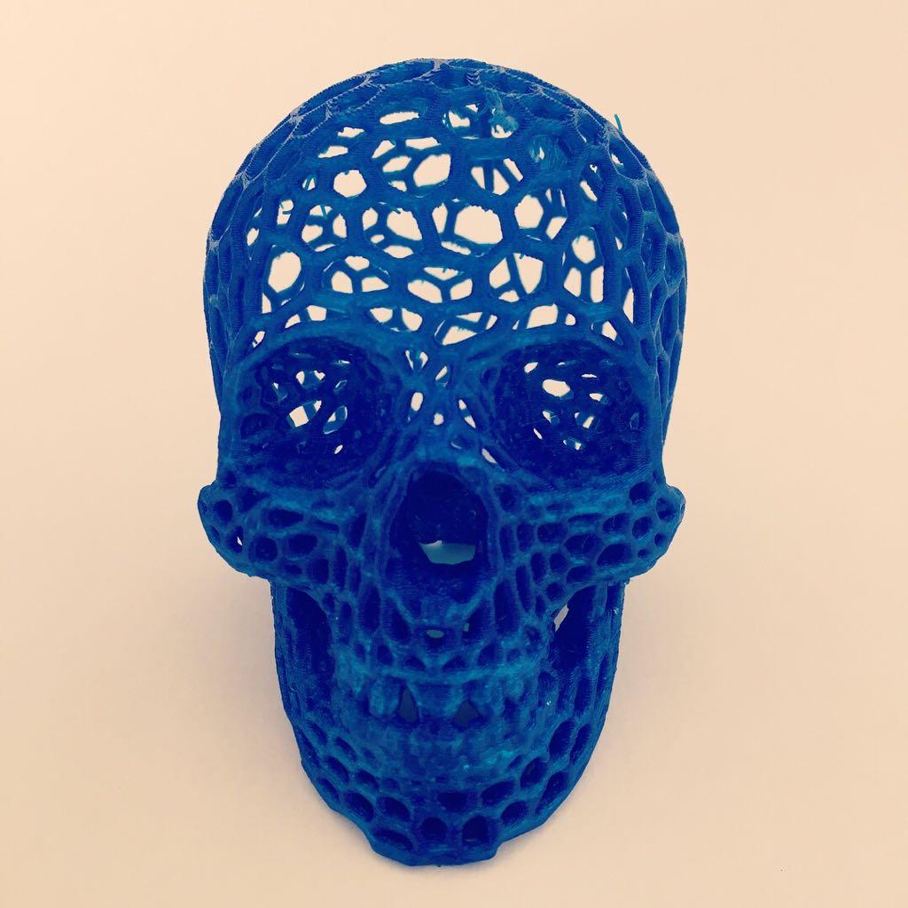 Calavera 3D (1)