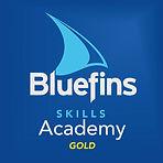 Skills_Academy_Gold_Logo.jpg