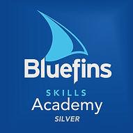 Skills_Academy_Silver_Logo.jpg