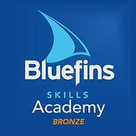 Skills_Academy_Bronze_Logo.jpg