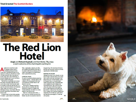 The Red Lion in Dog Friendly Magazine