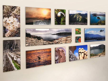Acrylic Prints in the Gallery, Home, Office and Beyond