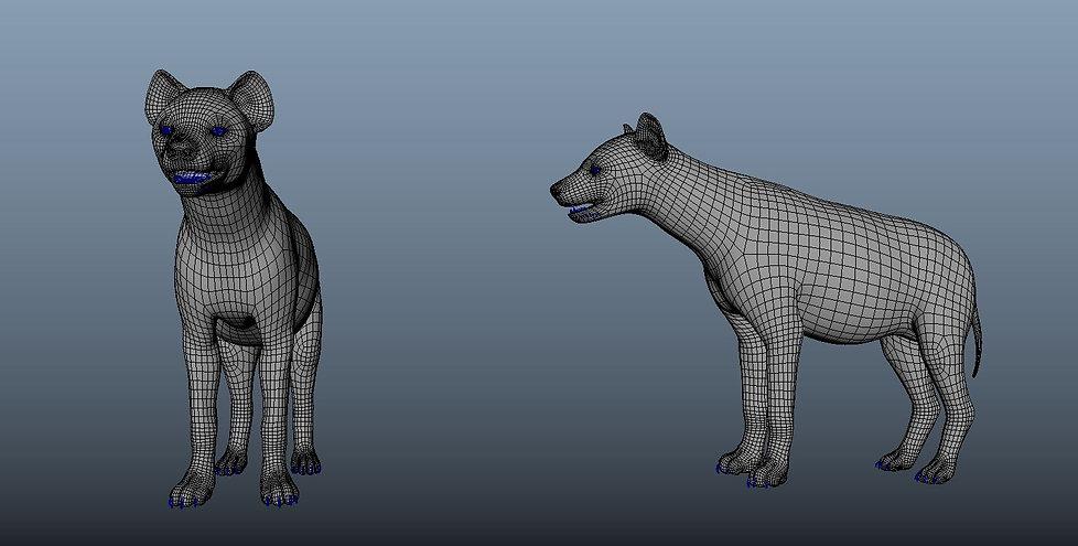 HyenaWireFrame.JPG