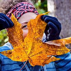 Lisa+Leaf.jpg