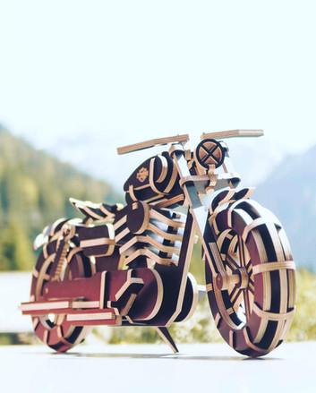 tanko_designs_moto_harley_bois