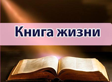 """Консультация """"Книга Жизни"""""""