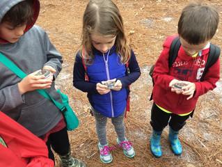 Fireflies Spring 2018: Week 7 - Story Compass Hunt