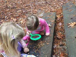 Tadpoles: Week Seven - Mud, Mushrooms and Acorns!