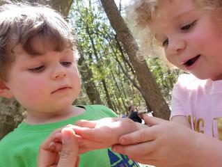 Journey Worm, Creek Play, and Leaf Piñata